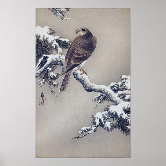 松に鷹, halcón del 古邨 en el árbol de pino, Ohara Póster