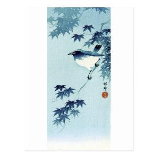 青い鳥, pájaro del 古邨 en el azul, Koson, Ukiyo-e Postal