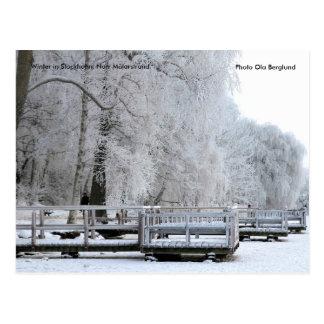 01.  Invierno en Estocolmo. Norr Mälars… Postal