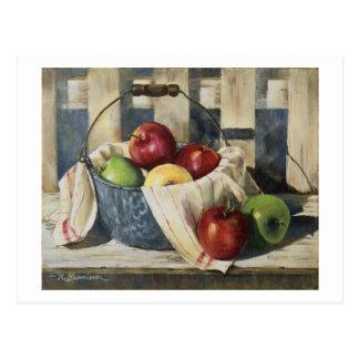 0449 manzanas en postal del cubo del Enamelware