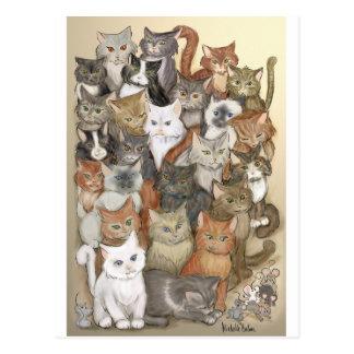 1000 gatos postal