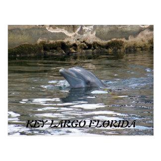 100_8578, LARGO DOMINANTE LA FLORIDA POSTAL