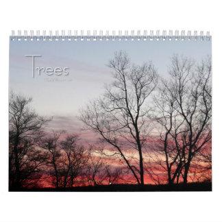 12 meses de árboles hermosos, 1ra edición calendario
