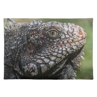 1920px-Iguanidae_head_from_Venezuela Salvamanteles
