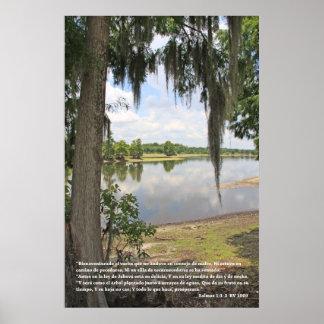 1:1 de Salmos - 3 (estafa Río y Arbol del cártel) Poster
