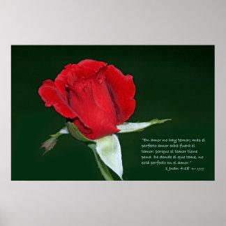 1 estafa Rosa Don Juan del 4 18 de Juan Impresiones