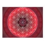 1 flor de Chakra de rojo de la vida Postales