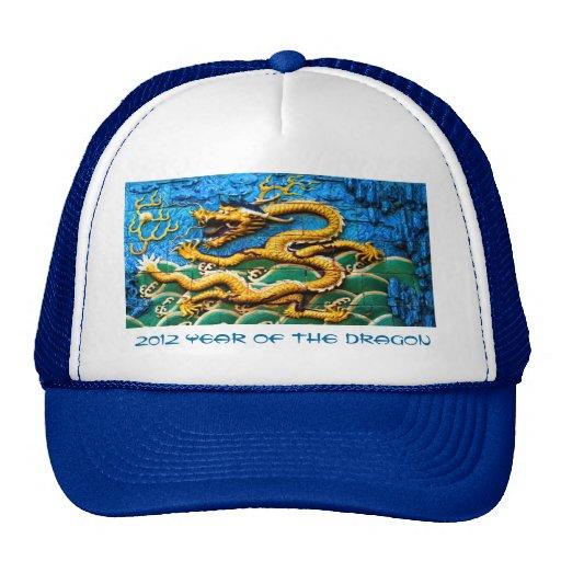 2012 años del casquillo del dragón gorros bordados