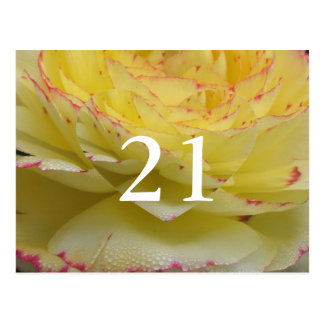 21ro Postal floral delicada del cumpleaños
