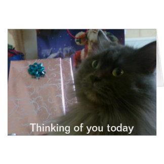 23 de diciembre de 2010 028, pensando en usted hoy tarjeta de felicitación