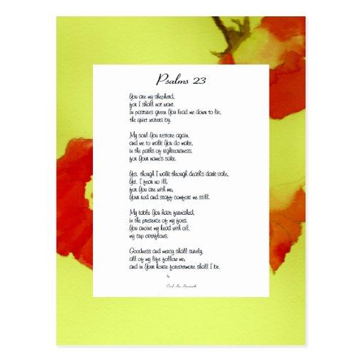 23ro postal del poema del salmo