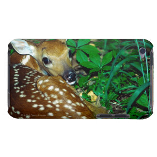 24114390 BARELY THERE iPod FUNDAS