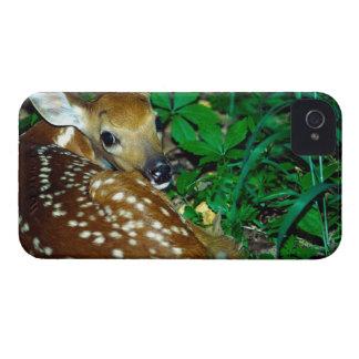 24114390 CARCASA PARA iPhone 4 DE Case-Mate