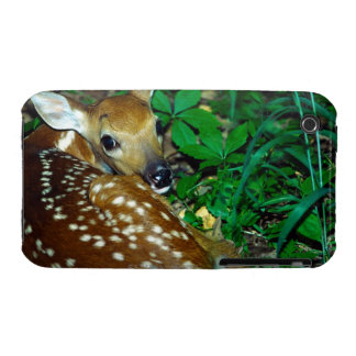 24114390 Case-Mate iPhone 3 PROTECTORES