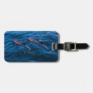 2 delfínes de Bottlenose - etiqueta del equipaje