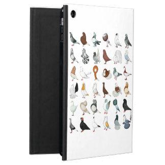 36 razas de la paloma