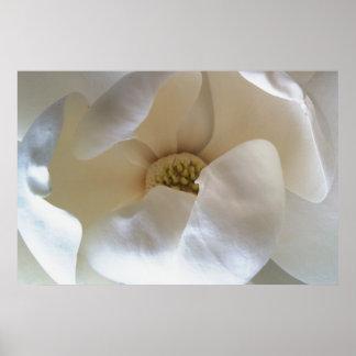 """36"""" x 24"""" poster de la magnolia, valora el poster"""