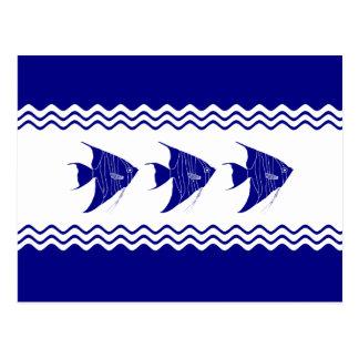 3 Angelfish costeros de la decoración de los Postal