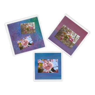 3 bandeja - sistema de la foto de la flor de