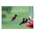 3 colibríes en el alimentador modifican cualquier tarjeta de felicitación