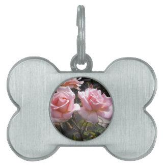 #3 color de rosa placa para mascotas