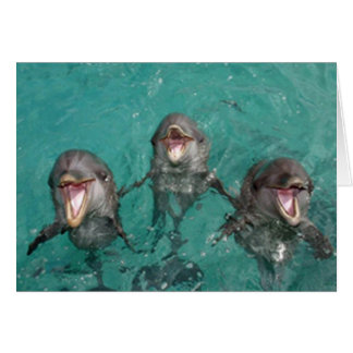 3 delfínes tarjeta de felicitación