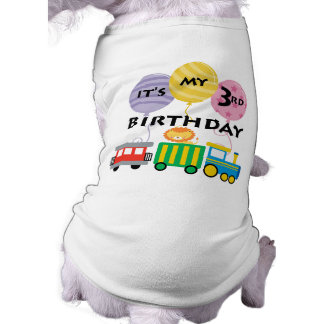 3ro Cumpleaños del tren del cumpleaños