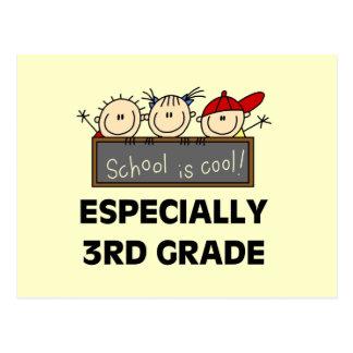 3ro La escuela primaria es camisetas y regalos Postal