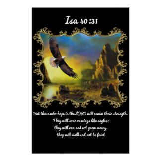 40:31 del AIA con Eagle que vuela sobre el paisaje Póster