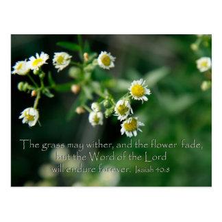 40:8 de Isaías la hierba puede marchitar y Tarjetas Postales