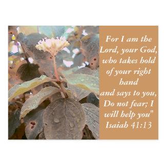 41:13 de Isaías Postal
