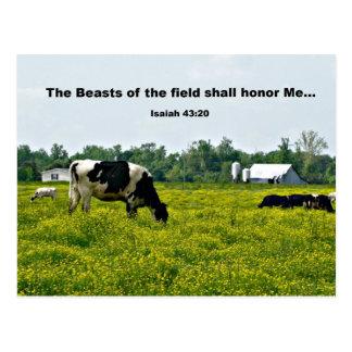 43:20 de Isaías las bestias del campo honrarán. Postal