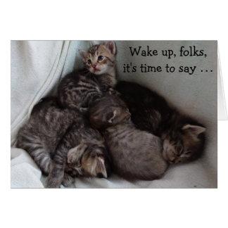 4 gatitos en una tarjeta de cumpleaños divertida