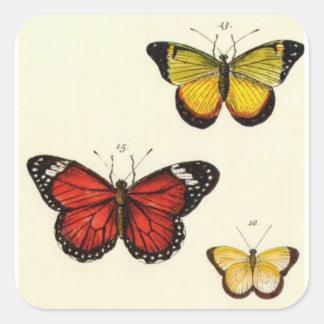4 Mariposas - Pegatina