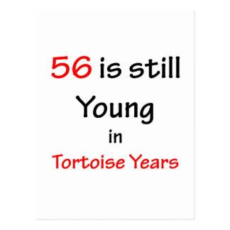 56 años de la tortuga postal