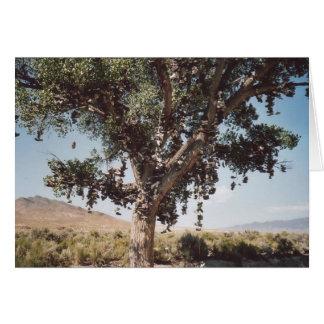 60. Árbol del zapato, Nevada Tarjeta