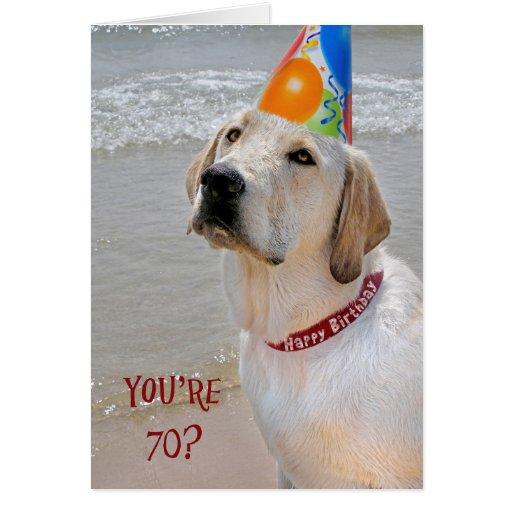70.o Perro perdiguero del cumpleaños Tarjetas