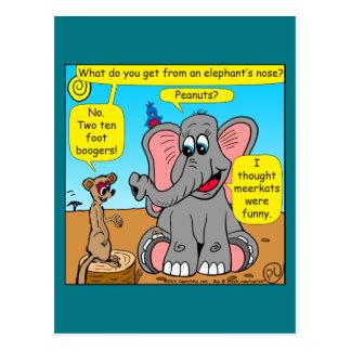872 elefantes y dibujo animado de la nariz del postal
