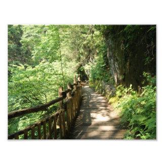 A lo largo del Ridge impresión fotográfica 11 x 8