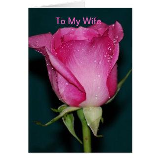 A mi esposa felicitaciones