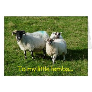 A mis pequeños corderos… tarjeta pequeña