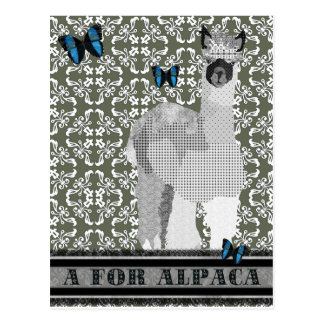 A para la postal de la alpaca