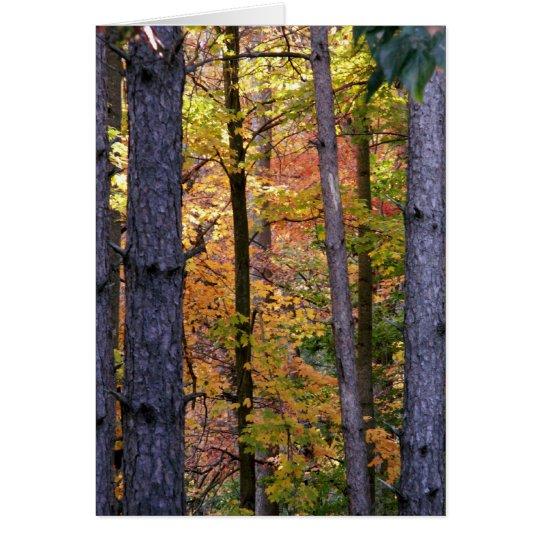 A través de los árboles Notecard Tarjeta Pequeña