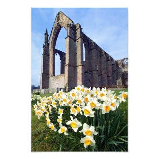 Abadía de Bolton, Wharfedale, los valles de Yorksh Fotografias