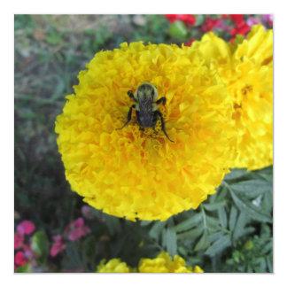Abeja amarilla de la flor de la maravilla del invitación 13,3 cm x 13,3cm