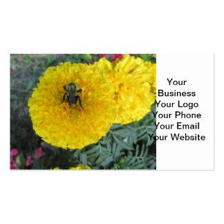 Abeja amarilla de la flor de la maravilla del tarjetas de visita