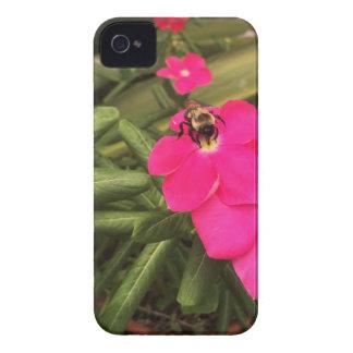 abeja carcasa para iPhone 4