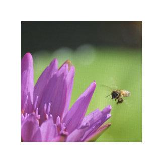 Abeja de la miel del vuelo lienzo