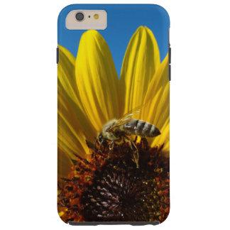 Abeja de la miel en la caja de la foto del girasol funda resistente iPhone 6 plus