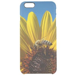 Abeja de la miel en la caja de la foto del girasol funda transparente para iPhone 6 plus